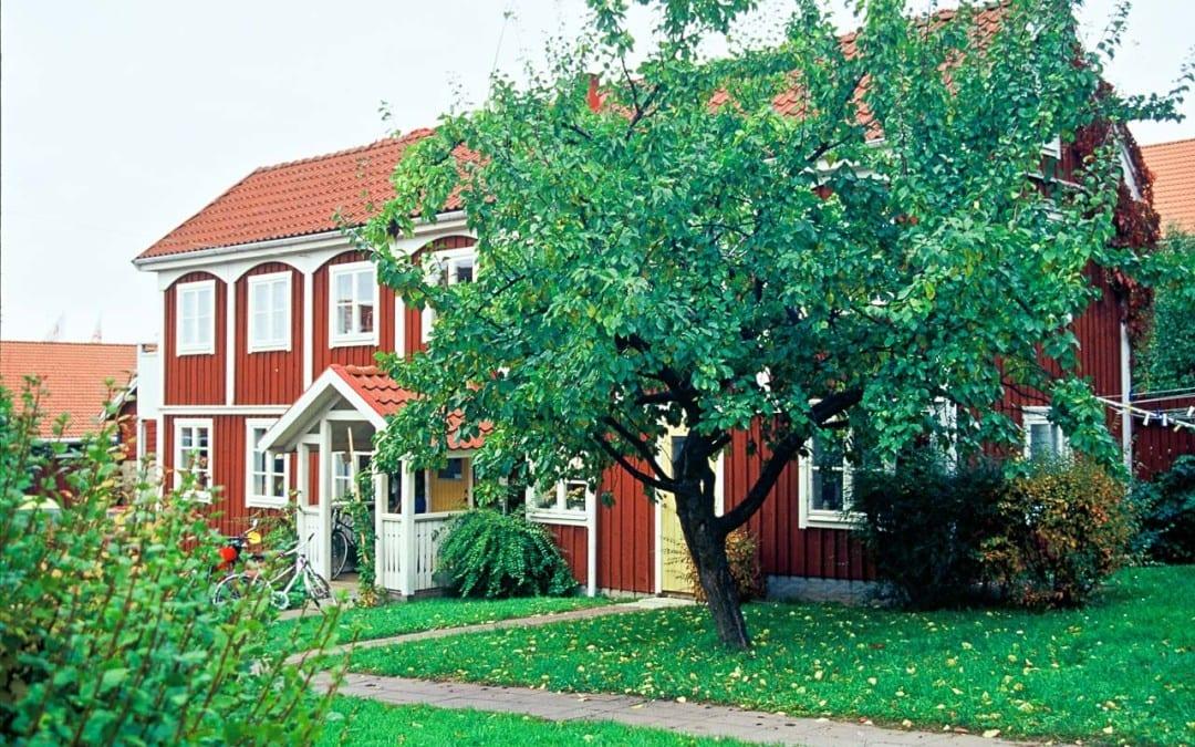 Romans Entreprenad & Trädgård